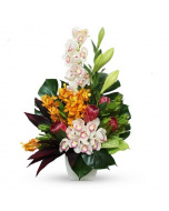 Modern Tropical Arrangement