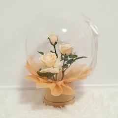 Dreamland Balloon - Champagne