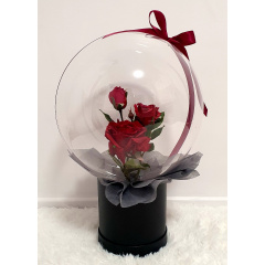 Dreamland Balloon - Ruby