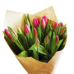 Tulipian