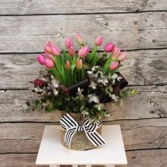 Tulips Delight