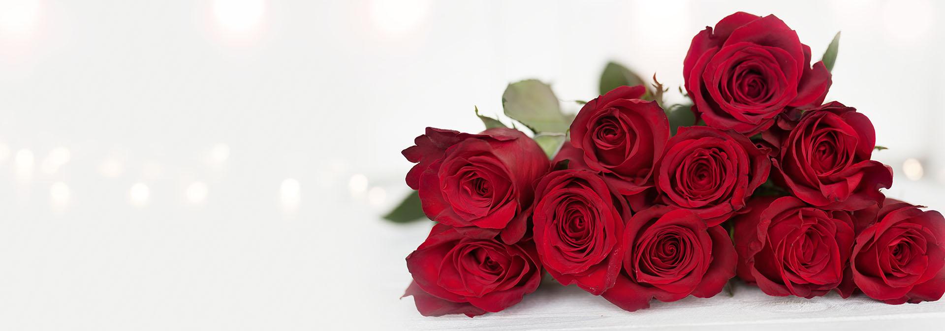 rose Season 2021